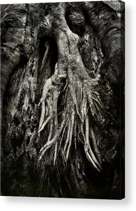 Tree Acrylic Print featuring the photograph Kneeling At The Feet Of The Green Man by Rebecca Sherman