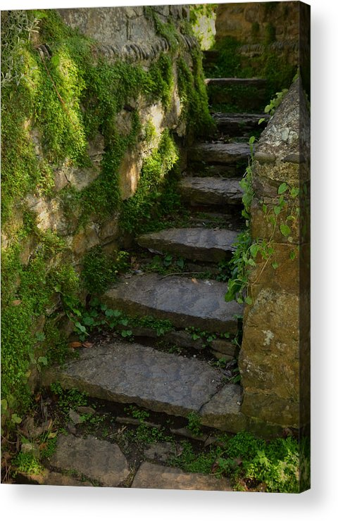 Step Acrylic Print featuring the photograph Mossy Steps by Carla Parris