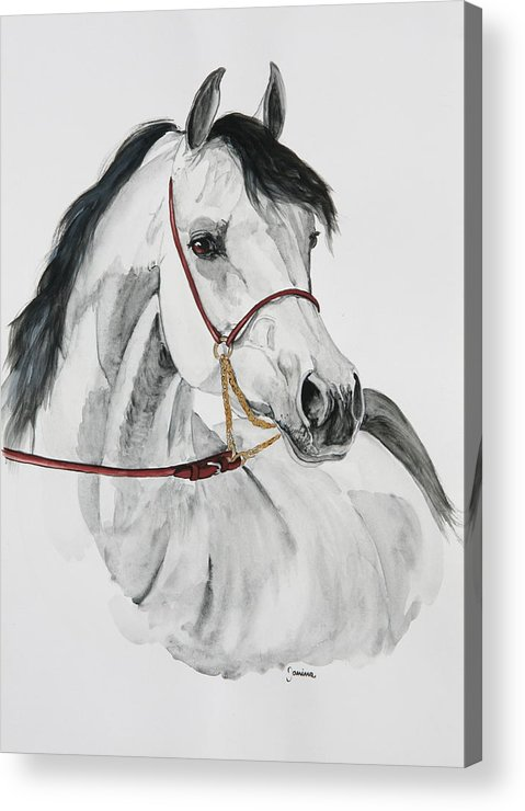 Horse Original Painting Acrylic Print featuring the painting Psynister by Janina Suuronen