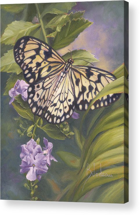 Butterfly Acrylic Print featuring the painting Rice Paper Butterfly by Lucie Bilodeau
