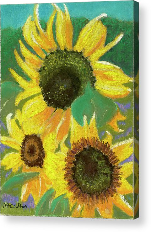 Sunflowers Acrylic Print featuring the painting Triple Gold by Arlene Crafton