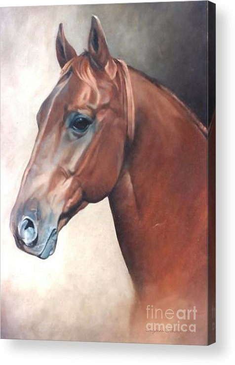 Horses Acrylic Print featuring the painting Winddancer by Suzanne Schaefer