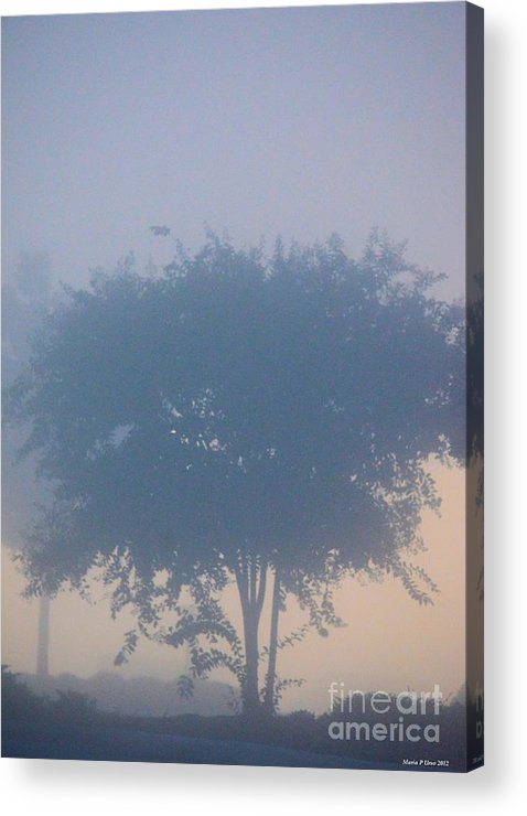 A Gothic Silhouette Acrylic Print featuring the photograph A Gothic Silhouette by Maria Urso