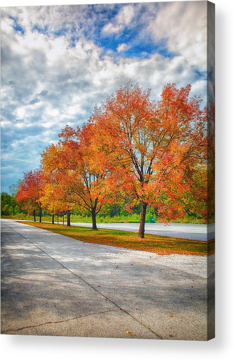 Ahden Knight Hampton Memorial Lake Acrylic Print featuring the photograph Autumn Trees At Busch by Bill Tiepelman
