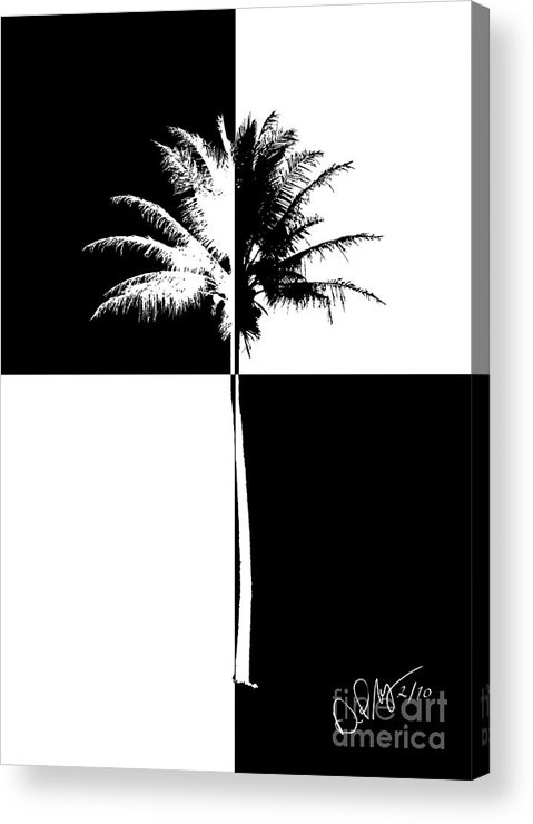 Checkered Palm Acrylic Print featuring the photograph Checkered Palm by David Paul Murray
