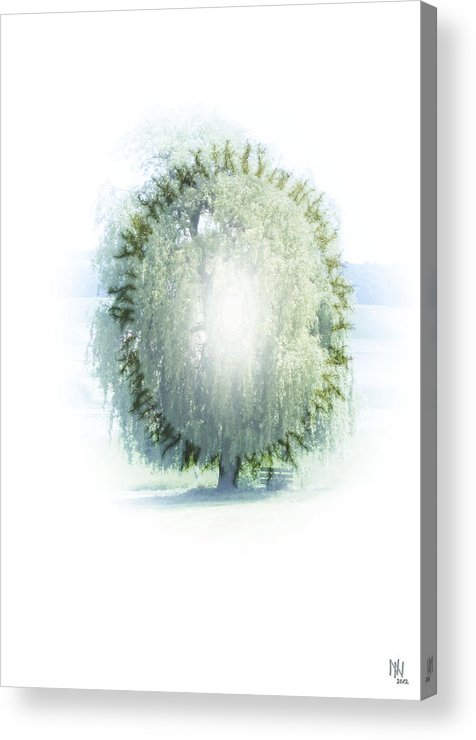 Enlightenment Acrylic Print featuring the digital art Enlightment Of The Willow by Nafets Nuarb