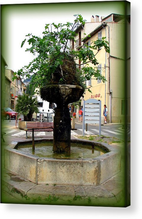 Cassis Acrylic Print featuring the photograph Fig Tree Fountain In Cassis by Carla Parris