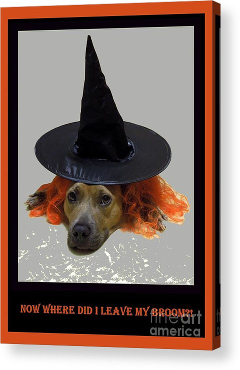 Halloween Acrylic Print featuring the photograph Forgetful by Renee Trenholm