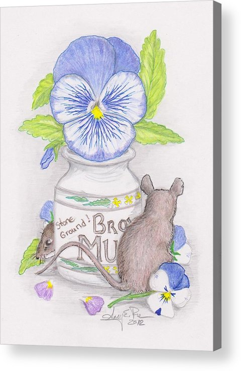 Pansy Acrylic Print featuring the drawing Hide And Seek by Amy Peare