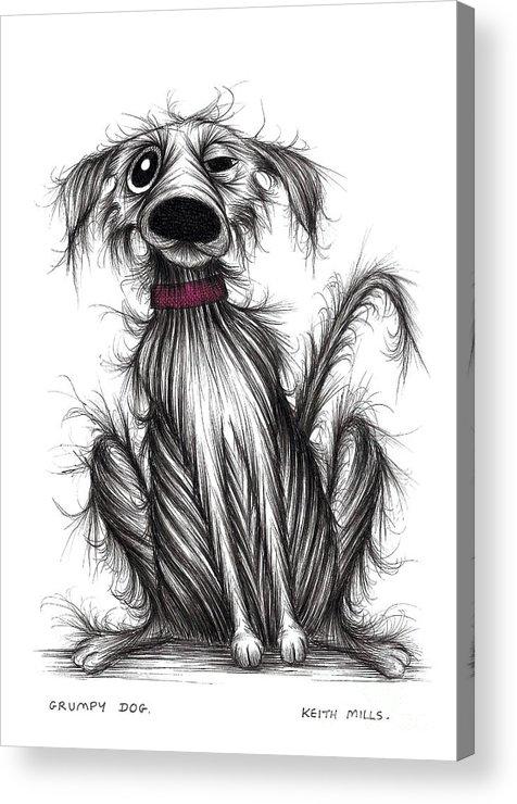 Grumpy Dog Acrylic Print featuring the drawing Grumpy Dog by Keith Mills