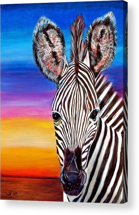 Zebra Acrylic Print featuring the painting African Zebra Aura by Donna Proctor