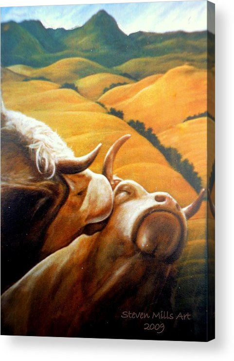 Cow Acrylic Print featuring the painting Bovine Bliss by Steven Mills