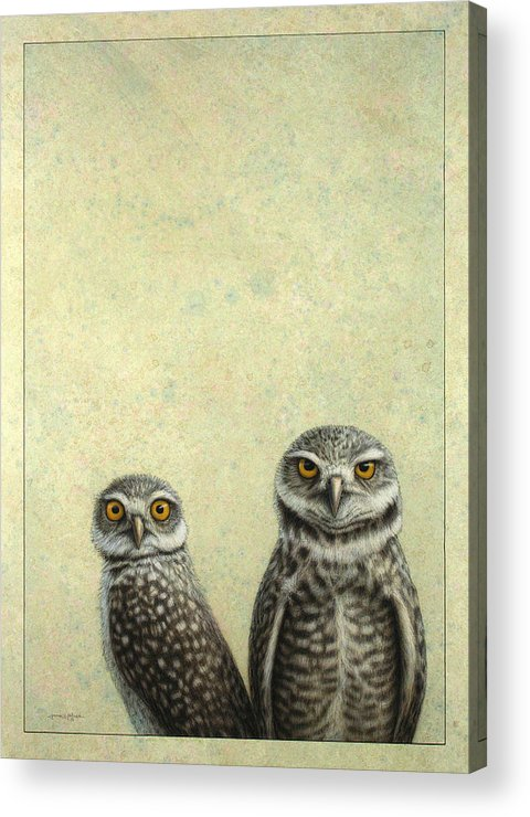 Owls Acrylic Print featuring the painting Burrowing Owls by James W Johnson