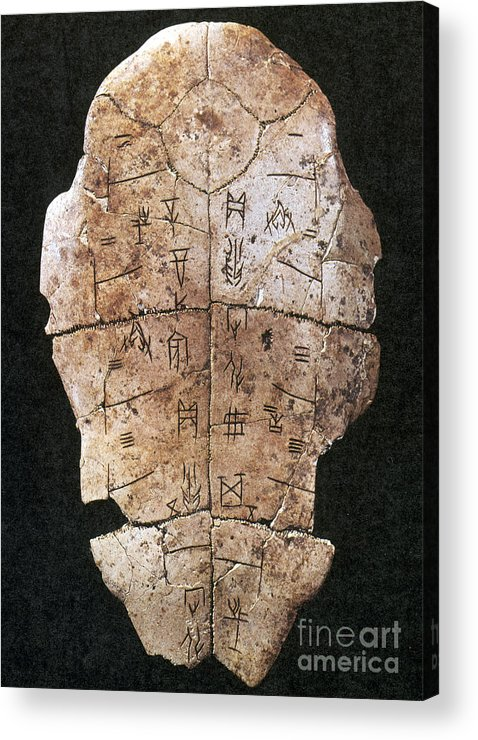 2nd Millennium B.c Acrylic Print featuring the photograph China: Oracle Shell by Granger