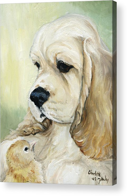 Dog Acrylic Print featuring the painting Cocker Spaniel And Chick by Charlotte Yealey