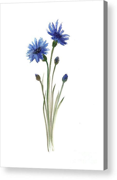 Cornflowers Art Print Minimalist Watercolour Painting Blue Green