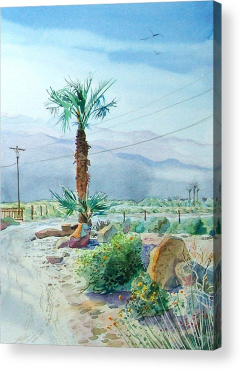 Watercolor Acrylic Print featuring the painting Desert Palm by John Norman Stewart