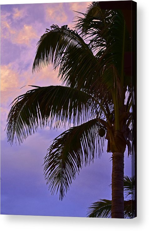 Sunset Acrylic Print featuring the photograph Drama In The Sky by Maria Keady