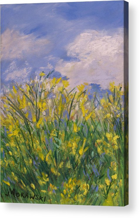 Nature Acrylic Print featuring the painting Fresh Air by Cindy Morawski