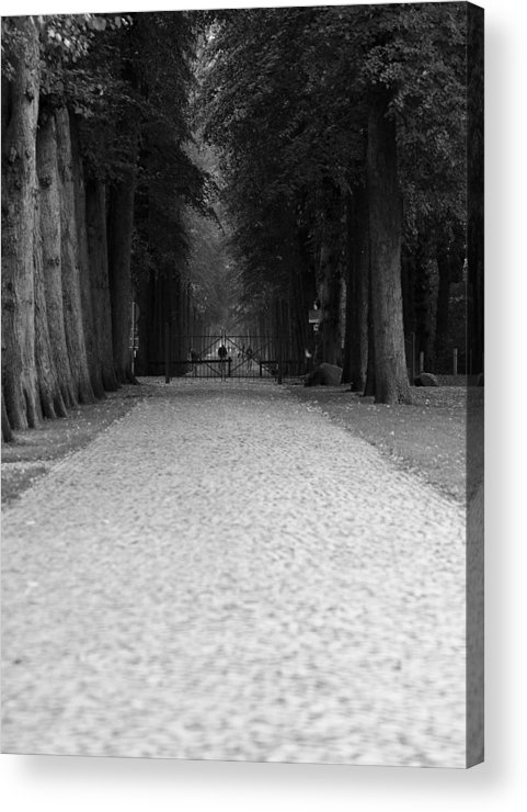 Park Acrylic Print featuring the photograph Gated Path by Edward Myers