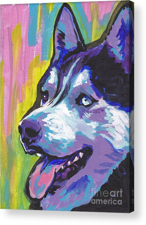 Siberian Husky Acrylic Print featuring the painting Go Husky by Lea S