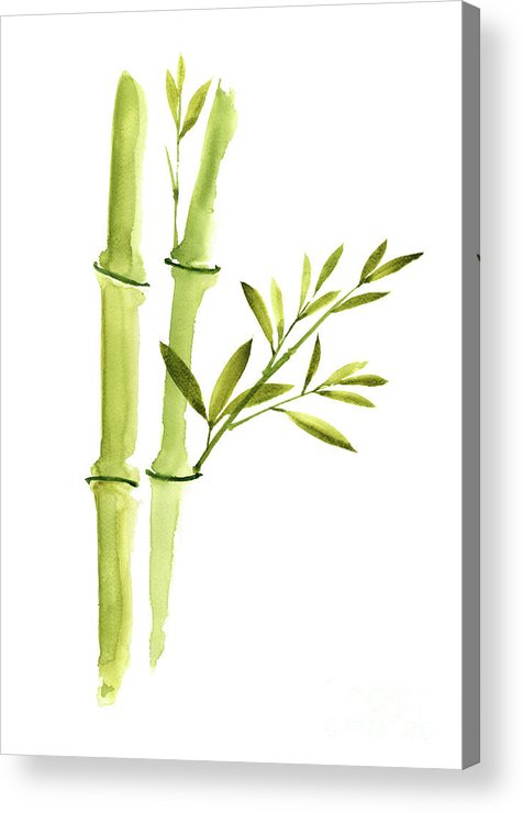 Bamboo Leaves Green Living Room Wall Decor Watercolor Painting Acrylic Print