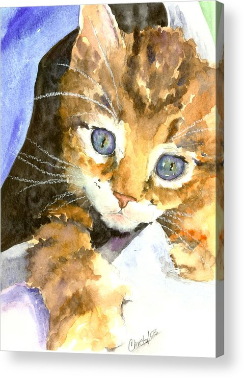Cat Acrylic Print featuring the painting Kitten In Blue by Christy Freeman