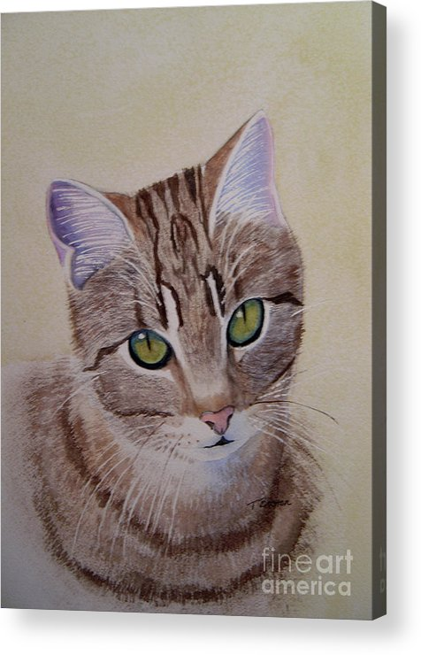 Animal Acrylic Print featuring the painting Little Zeke Stray Cat Series One by Teresa Boston