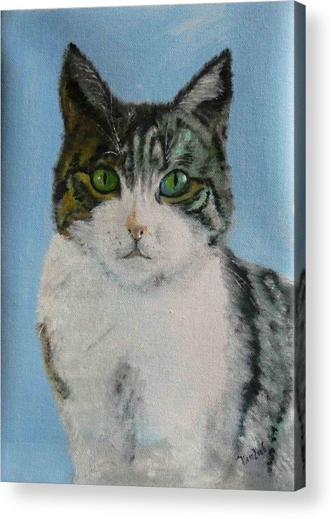 Tomcat Acrylic Print featuring the painting Momo by Helmut Rottler