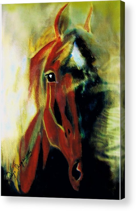 Horse Drawings Acrylic Print featuring the mixed media My Mystery by Tarja Stegars