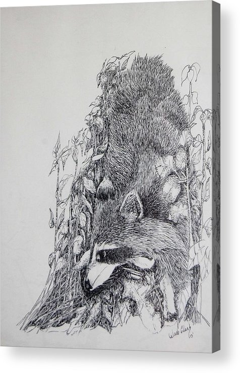 Animals Acrylic Print featuring the drawing Out Of The Woods by Wade Clark