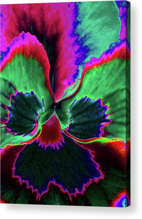 Pansy Acrylic Print featuring the photograph Pansy 10 - Photopower - Thoughts Of You by Pamela Critchlow
