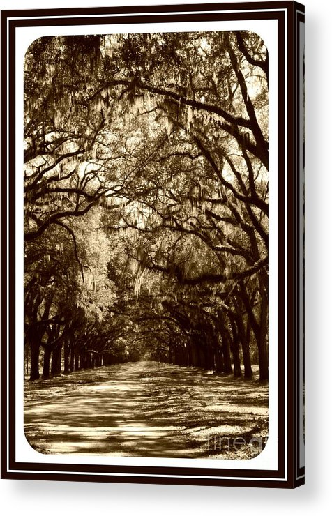 Brown Acrylic Print featuring the photograph Southern Welcome In Sepia by Carol Groenen