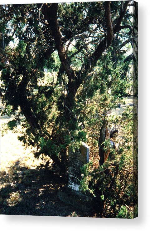Hidden Grave Stone Mesquite Acrylic Print featuring the photograph The Hidden Grave by Cindy New