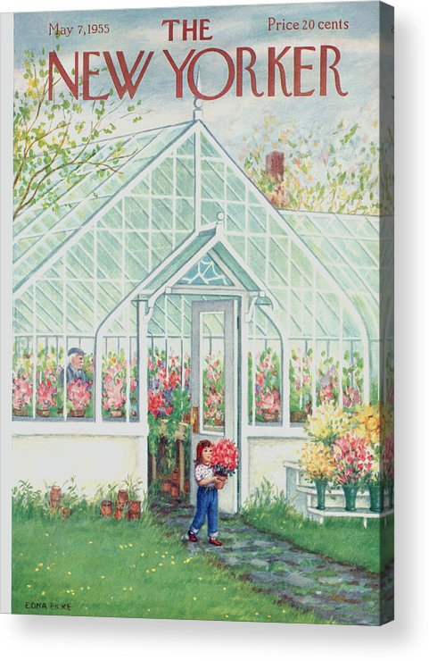 Greenhouse Acrylic Print featuring the painting The New Yorker Cover - May 7th, 1955 by Edna Eicke
