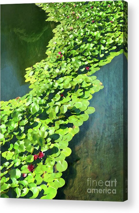Nature Acrylic Print featuring the digital art Unity by Michelle Twohig