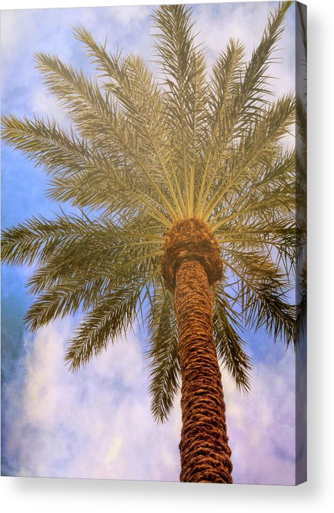 Vegas Acrylic Print featuring the photograph View From The Pool by JAMART Photography