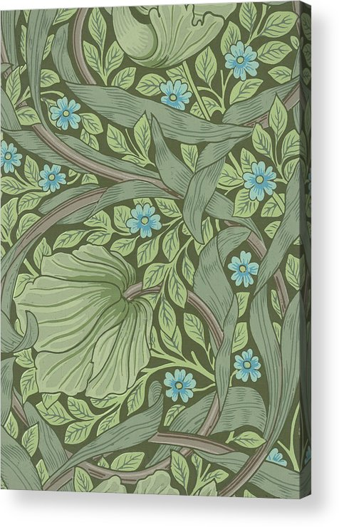Wallpaper Sample With Forget Me Nots Acrylic Print