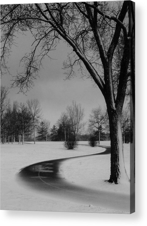 'winter Acrylic Print featuring the photograph Winter's Path by David Hubbs