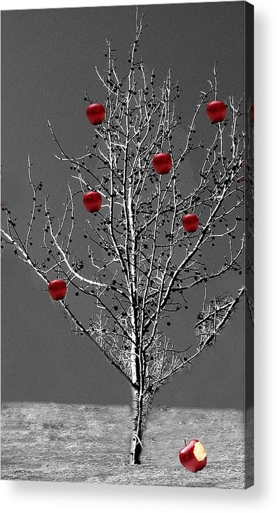 Tree Acrylic Print featuring the digital art Apple Tree by Kenna Westerman
