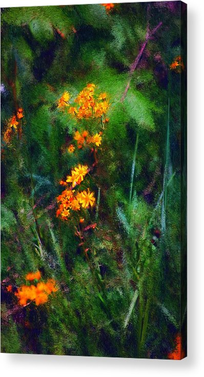 Digital Photography Acrylic Print featuring the digital art Flowers In The Woods At The Haciendia by David Lane