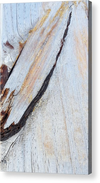 Wood Acrylic Print featuring the photograph Wood Grain by Ami Brown