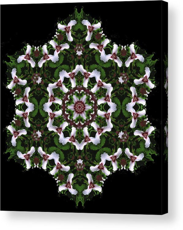 Mandala Acrylic Print featuring the digital art Mandala Trillium Holiday by Nancy Griswold