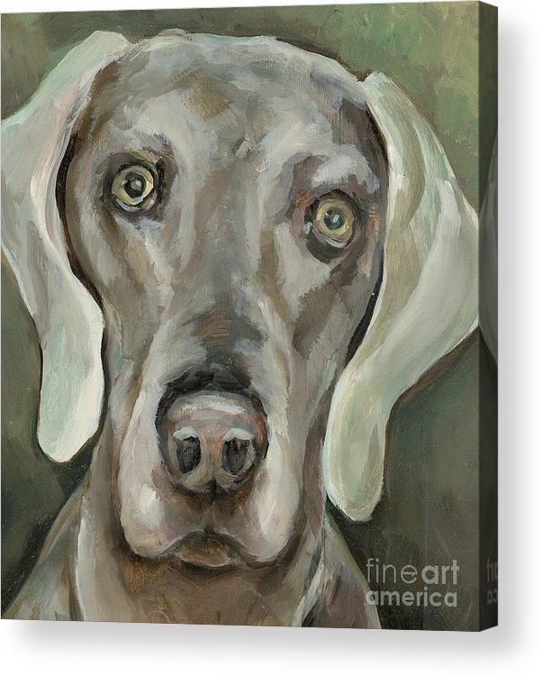 Dog Acrylic Print featuring the painting Maddie by Linda Vespasian