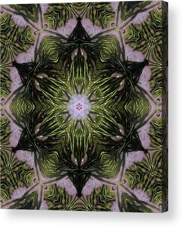 Mandala Acrylic Print featuring the digital art Mandala Sea Sponge by Nancy Griswold