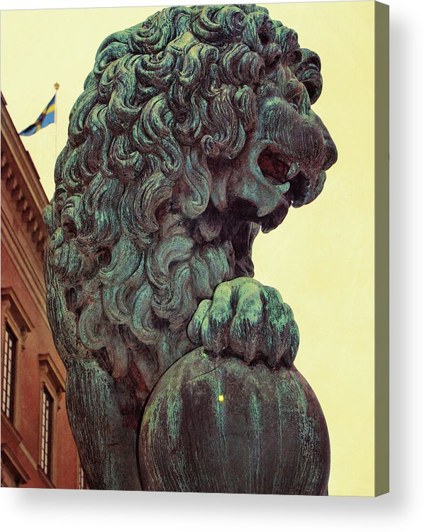 Lion Acrylic Print featuring the photograph Watchman by JAMART Photography