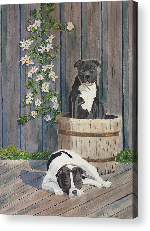 Dog Acrylic Print featuring the painting Devilish Duo At Rest by Ally Benbrook