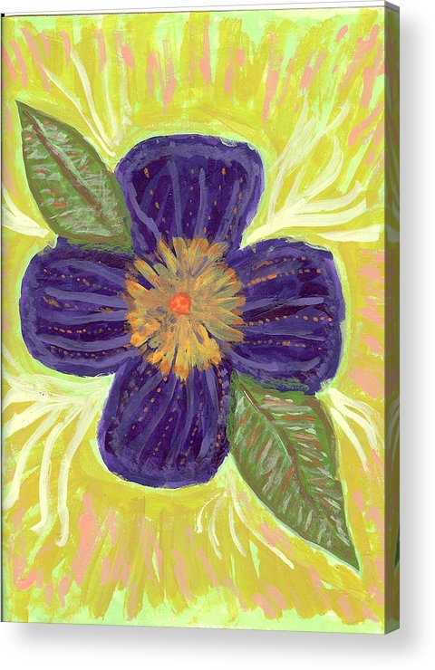 Flower Acrylic Print featuring the painting Pea In Pod by Laura Lillo