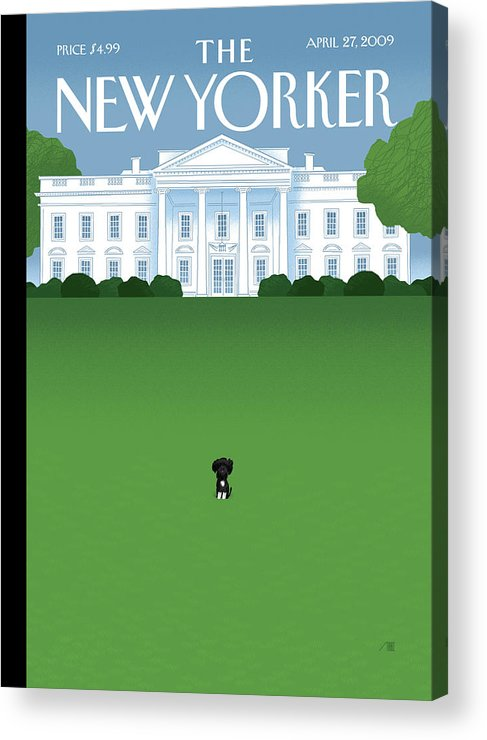 Obama Acrylic Print featuring the painting New Yorker April 27th, 2009 by Bob Staake