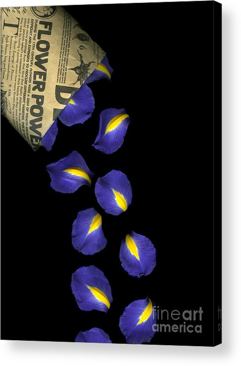 Scanography Acrylic Print featuring the photograph Petal Chips by Christian Slanec